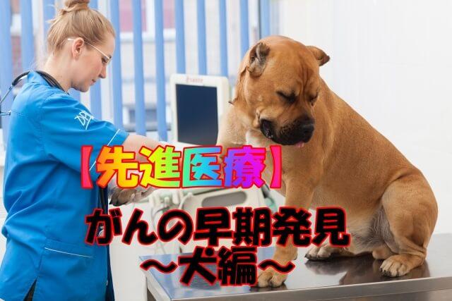 【先進医療】がんの早期発見~がん探知は犬にお任せ~