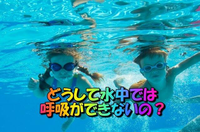 人体の不思議:水中で呼吸はできない理由(将来、できるようになるかも・・・)